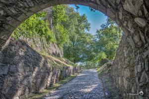 Festungsruine Hohentwiel bij Singen